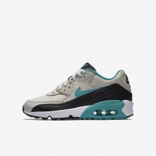 179AIEKU Boys Light Bone/Black/White/Sport Turquoise Nike Air Max 90 Leather Lifestyle Shoes