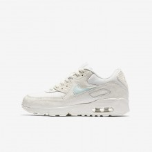 686OIZKW Girls Sail/Igloo Nike Air Max 90 Mesh Lifestyle Shoes